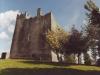 redwood-castle